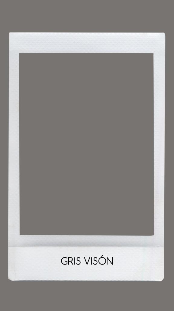 Color gris visón